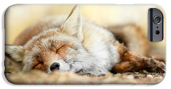 Sleeping Beauty -red Fox In Rest IPhone 6s Case
