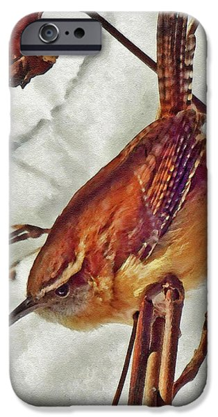 Slim Pickens, Carolina Wren IPhone 6s Case by Ken Everett