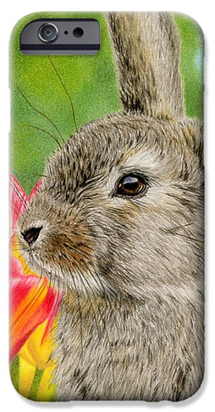 Color Pencil iPhone 6s Case - Smell The Flowers by Sarah Batalka