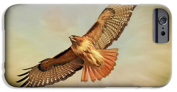 Buzzard iPhone 6s Case - Smooth Operator by Donna Kennedy