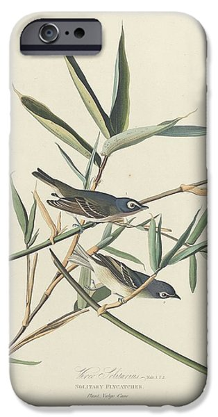 Solitary Flycatcher IPhone 6s Case