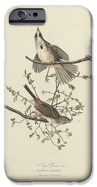 Song Sparrow IPhone 6s Case by Anton Oreshkin