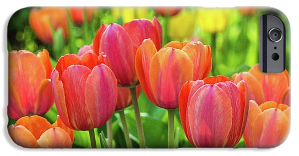 IPhone 6s Case featuring the photograph Splash Of April Color by Bill Pevlor
