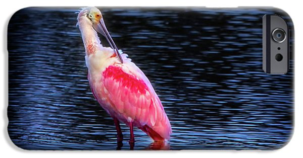 Spoonbill Sunset IPhone 6s Case by Mark Andrew Thomas