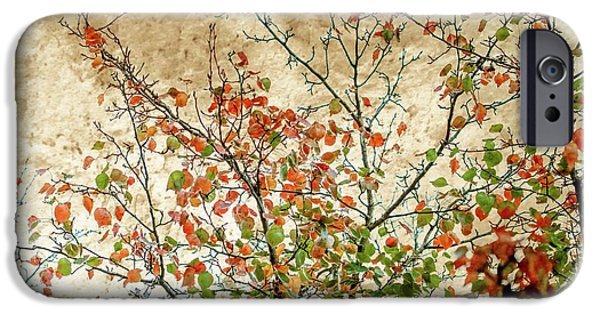 New Leaf iPhone 6s Case - Spring Is Gone by Az Jackson