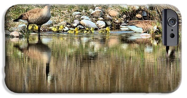 Gosling iPhone 6s Case - Strolling Along The Bank by Adam Jewell
