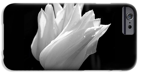 Sunlit White Tulips IPhone 6s Case