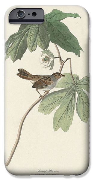 Swamp Sparrow IPhone 6s Case by Rob Dreyer