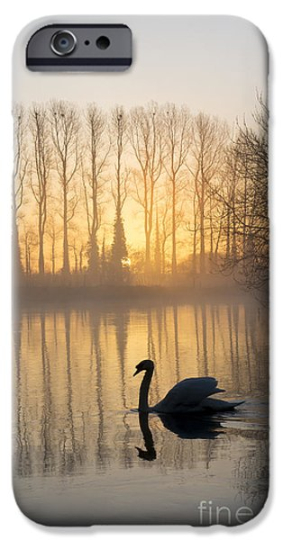 Swan Lake IPhone 6s Case by Tim Gainey