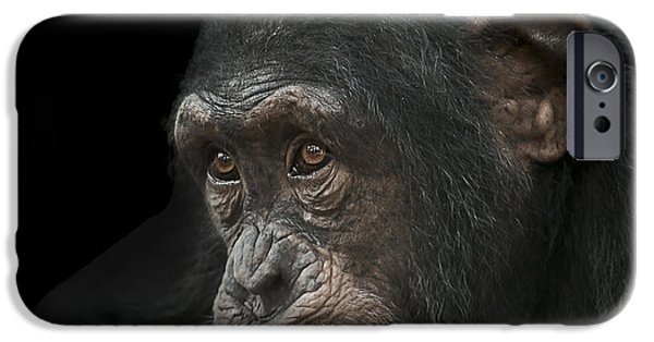 Chimpanzee iPhone 6s Case - Tedium by Paul Neville