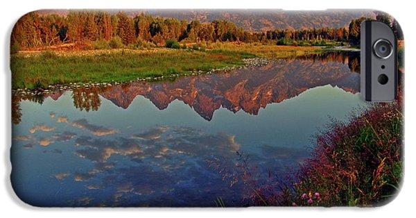 Mountain iPhone 6s Case - Teton Wildflowers by Scott Mahon
