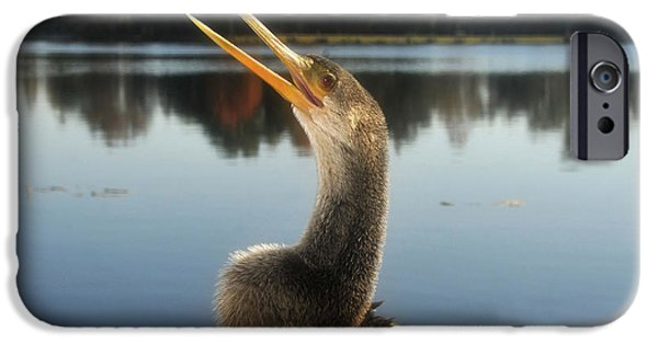 The Great Golden Crested Anhinga IPhone 6s Case by David Lee Thompson