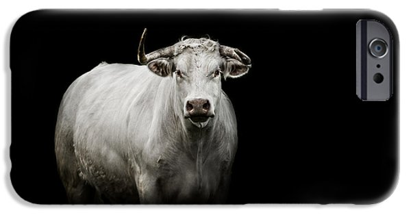 Bull iPhone 6s Case - The Guardian by Paul Neville
