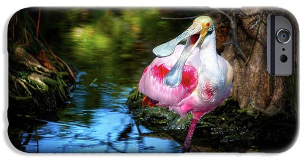 The Happy Spoonbill IPhone 6s Case by Mark Andrew Thomas