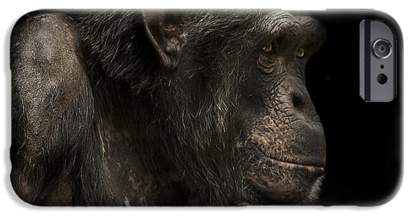 Chimpanzee iPhone 6s Case - The Listener by Paul Neville