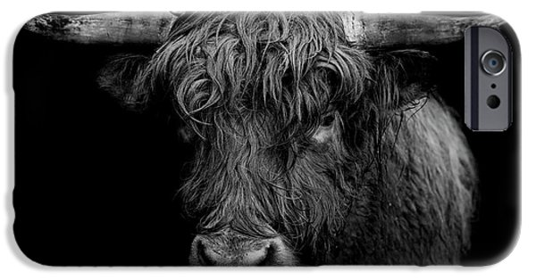 Bull iPhone 6s Case - The Monarch by Paul Neville