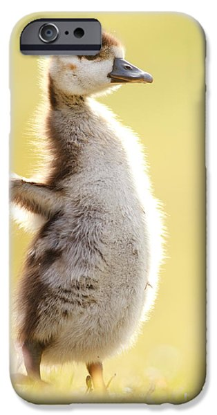 Gosling iPhone 6s Case - The Pinguin Simulator by Roeselien Raimond