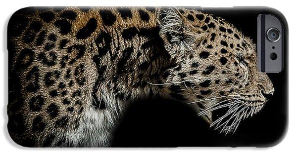 Leopard iPhone 6s Case - The Seeker by Paul Neville