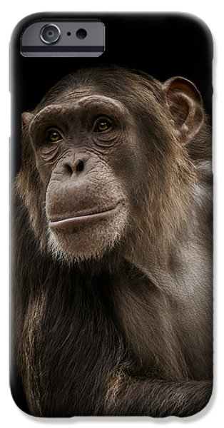 Chimpanzee iPhone 6s Case - The Storyteller by Paul Neville