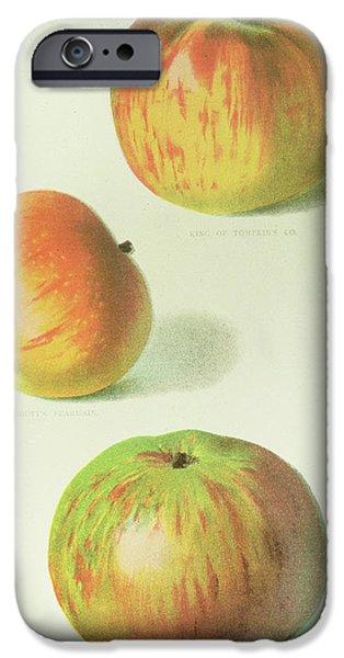 Three Apples IPhone 6s Case