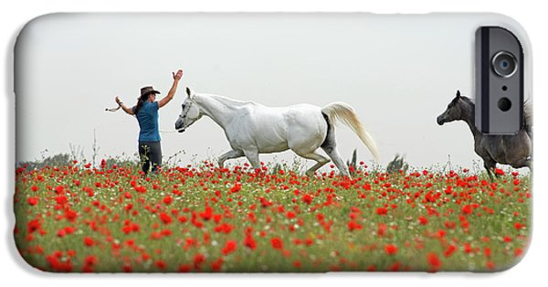 Three At The Poppies' Field IPhone 6s Case