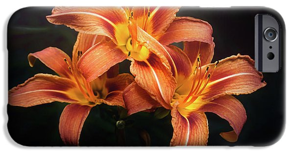 Lily iPhone 6s Case - Three Lilies by Scott Norris
