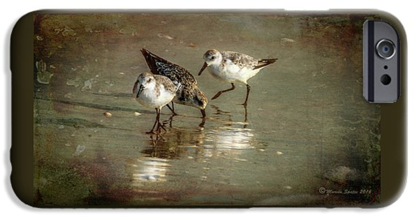 Sandpiper iPhone 6s Case - Three Together by Marvin Spates