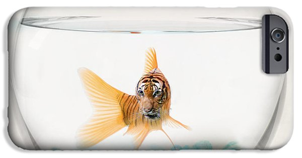 Tiger Fish IPhone 6s Case by Juli Scalzi