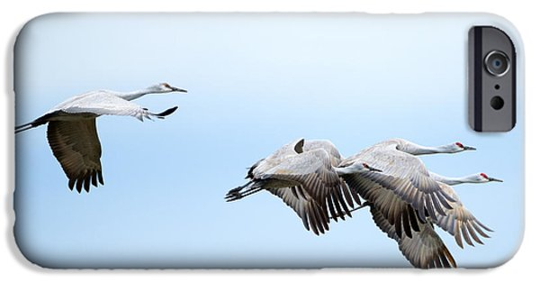 Tight Formation IPhone 6s Case by Mike Dawson