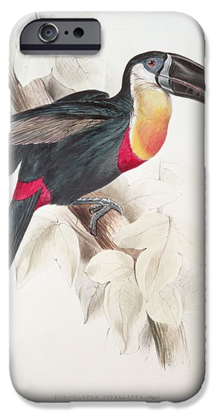 Toucan iPhone 6s Case - Toucan by Edward Lear
