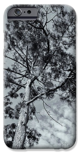 IPhone 6s Case featuring the photograph Towering by Linda Lees