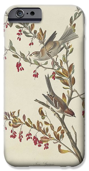 Tree Sparrow IPhone 6s Case