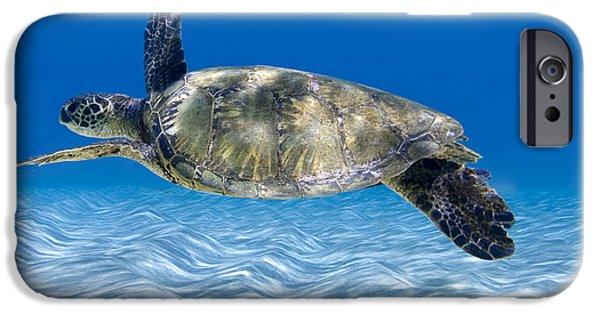 Turtle Flight -  Part 2 Of 3  IPhone 6s Case