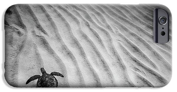 Turtle Ridge IPhone 6s Case by Sean Davey