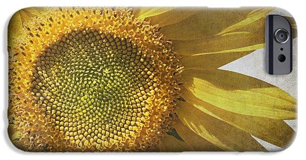 Sunflower iPhone 6s Case - Vintage Sunflower by Jane Rix