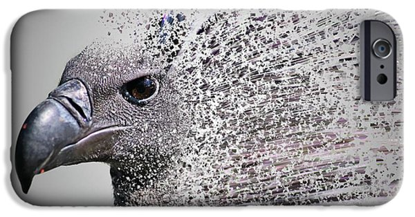 Vulture iPhone 6s Case - Vulture Break Up by Martin Newman