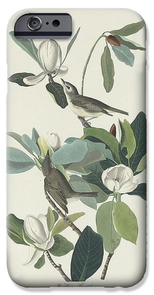 Warbling Flycatcher IPhone 6s Case
