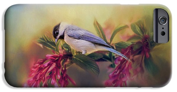 Watching Flowers Bloom Bird Art IPhone 6s Case