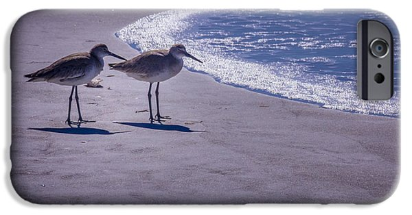 Sandpiper iPhone 6s Case - We Stand Together by Marvin Spates