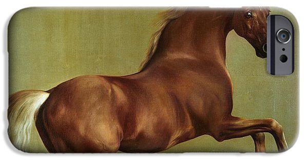 Horse iPhone 6s Case - Whistlejacket by George Stubbs