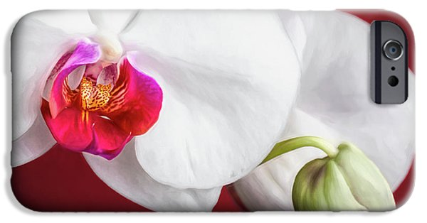 White And Red Orchids IPhone 6s Case