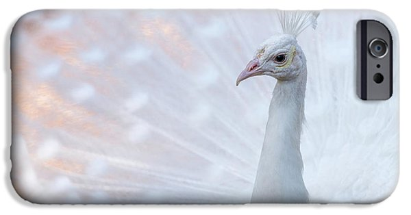IPhone 6s Case featuring the photograph White Peacock by Sebastian Musial
