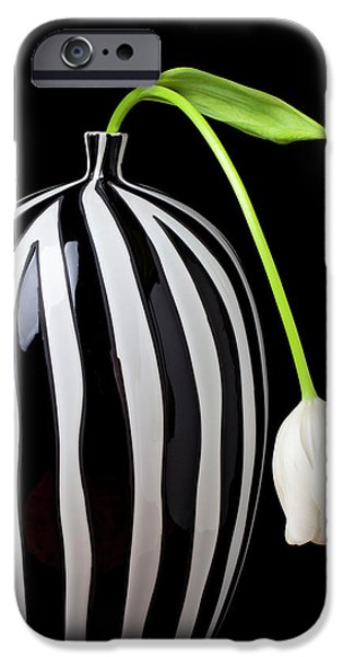 Tulip iPhone 6s Case - White Tulip In Striped Vase by Garry Gay