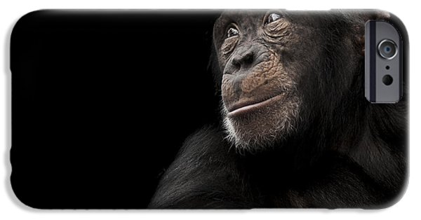 Chimpanzee iPhone 6s Case - Window To The Soul by Paul Neville