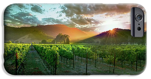 Wine Country IPhone 6s Case