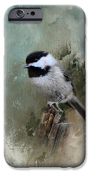 Winter Chickadee IPhone 6s Case
