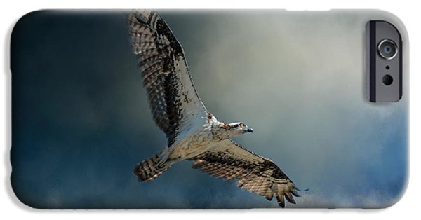 Winter Osprey IPhone 6s Case