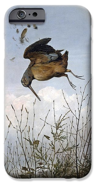 Woodcock iPhone 6s Case - Woodcock by Thomas Hewes Hinckley