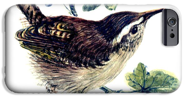 Wren In The Ivy IPhone 6s Case by Nell Hill