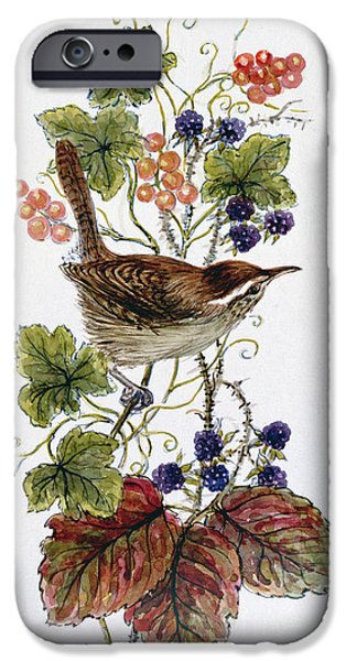 Wren On A Spray Of Berries IPhone 6s Case by Nell Hill